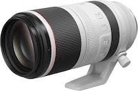 Canon RF100-500mm F4.5-7.1L IS USM